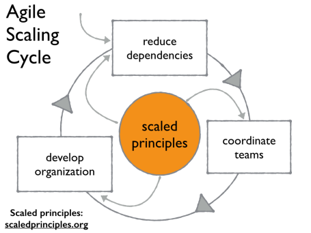 Agile Scaling Cycle.001