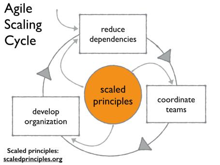 Agile Scaling Cycle.001